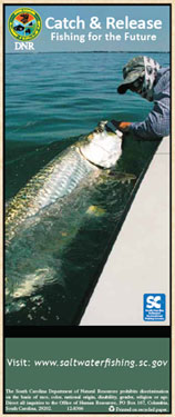 Catch and Release Brochure
