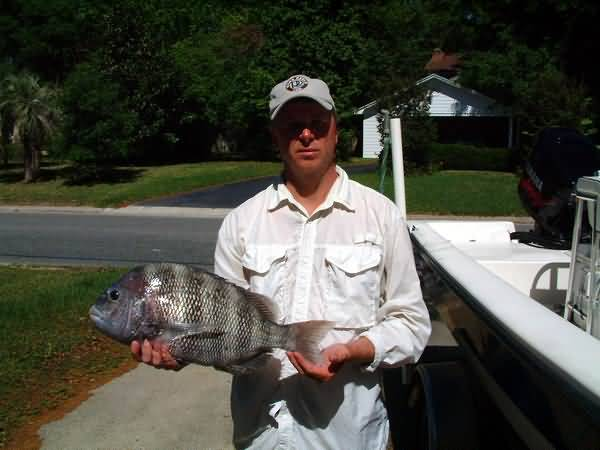 Saltwater recreational fishing license program for Sc saltwater fish