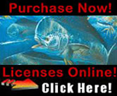 Purchase Licenses Online