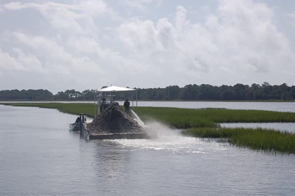 Saltwater recreational fishing license program for Sc saltwater fishing report